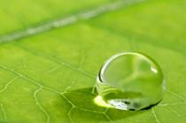 Öztoprak Service GmbH - Wassertropfen